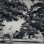 Dorpsgezicht Malden in ongeveer 1960. Foto 113